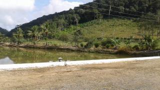 Guarulhos: Linda Fazenda com 80 alqueires em Registro - SP 17