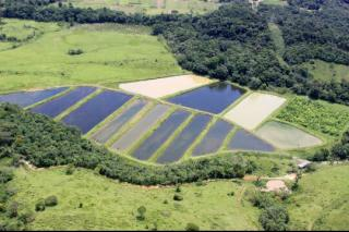 Paranaguá: Excelente Fazenda em Paranaguá - 44 Alqueires 2