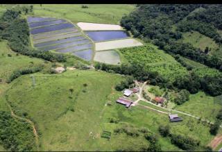 Paranaguá: Excelente Fazenda em Paranaguá - 44 Alqueires 3