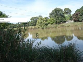 Betim: fazenda com 373 hectares; aceito permuta em  50% 1