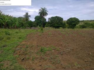 Betim: fazenda com 373 hectares; aceito permuta em  50% 4