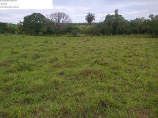 Betim: fazenda com 373 hectares; aceito permuta em  50% 5