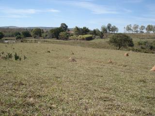 Betim: fazenda com 373 hectares; aceito permuta em  50% 9