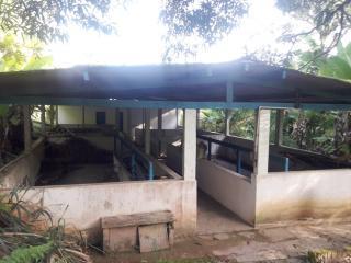 Niterói: Fazendo de 279.000 Boca do Mato Cachoeira de Macacu rj ama1307 39