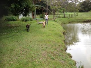 São Paulo: Sitio Excelente a um terreno enorme de 50500 m2 3