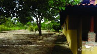 Caldas Novas: Fazenda próxima a área urbana 11