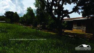 Caldas Novas: Fazenda próxima a área urbana 22
