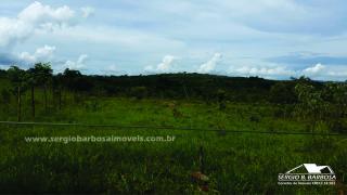 Caldas Novas: Fazenda próxima a área urbana 6