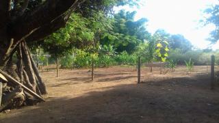 Itumbiara: VENDO CHACARÁ EM VICENTINÓPOLIS GOIAS 10