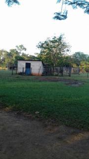 Itumbiara: VENDO CHACARÁ EM VICENTINÓPOLIS GOIAS 4