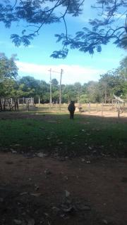 Itumbiara: VENDO CHACARÁ EM VICENTINÓPOLIS GOIAS 7