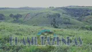 Eunápolis: Fazenda em Eunápolis BA a 85 km .433 Ha 3