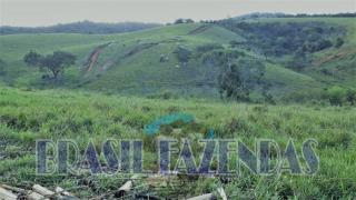 Eunápolis: Fazenda em Eunápolis BA a 85 km .433 Ha 4