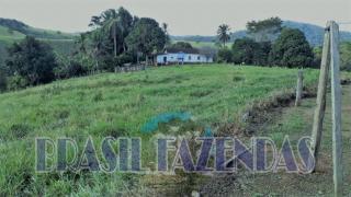 Eunápolis: Fazenda em Eunápolis BA a 85 km .433 Ha 7