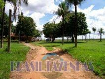 Eunápolis: Fazenda no Pará.72 mil hectares na pecuária 1