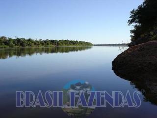 Eunápolis: Fazenda no Pará.72 mil hectares na pecuária 9