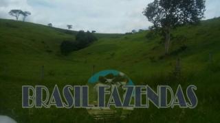 Eunápolis: Fazenda em Itamaraju 4 mil hectares 1