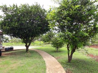 Goiânia: casa   no condominio villagio de Baiochi 15