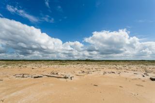 São Paulo: Terreno de Praia com 243 hectares e 1,6 kilometros linha mar 10