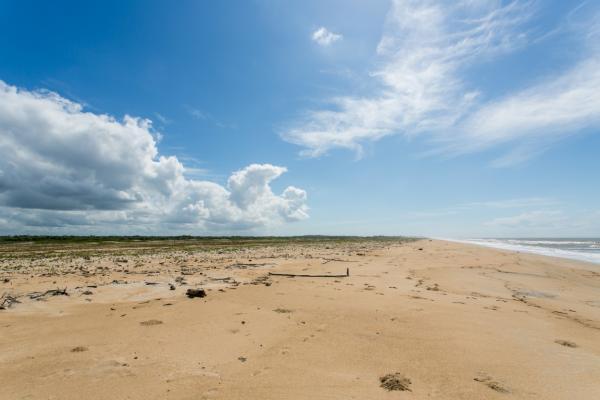 São Paulo: Terreno de Praia com 243 hectares e 1,6 kilometros linha mar 11