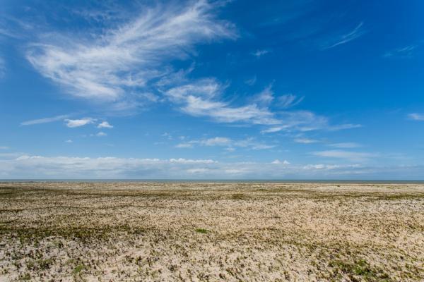 São Paulo: Terreno de Praia com 243 hectares e 1,6 kilometros linha mar 12
