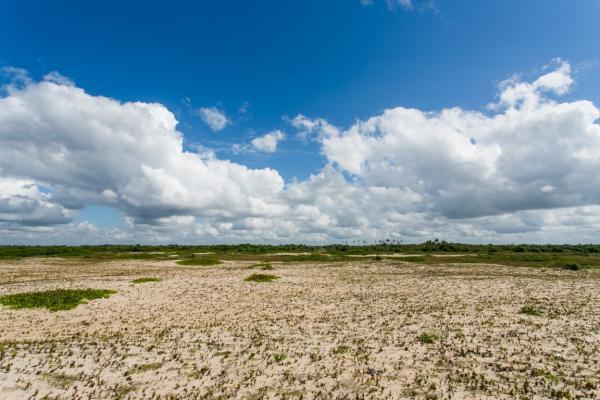 São Paulo: Terreno de Praia com 243 hectares e 1,6 kilometros linha mar 13
