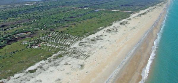 São Paulo: Terreno de Praia com 243 hectares e 1,6 kilometros linha mar 18