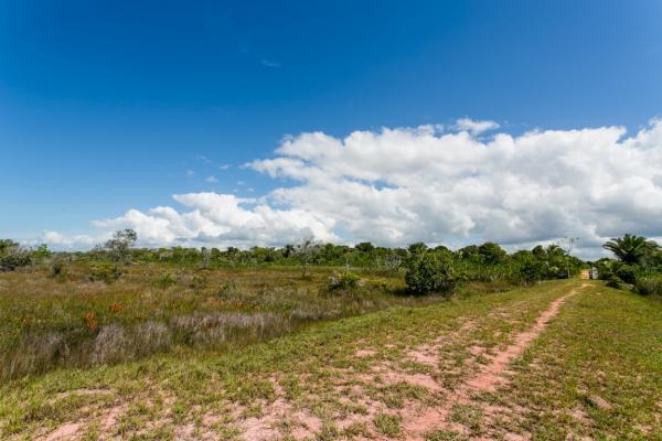 São Paulo: Terreno de Praia com 243 hectares e 1,6 kilometros linha mar 20