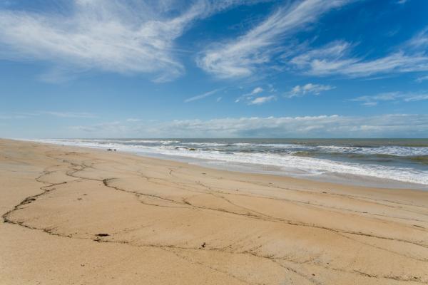 São Paulo: Terreno de Praia com 243 hectares e 1,6 kilometros linha mar 4