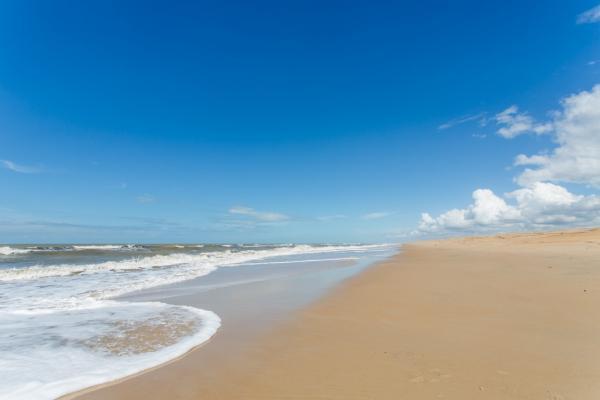 São Paulo: Terreno de Praia com 243 hectares e 1,6 kilometros linha mar 8