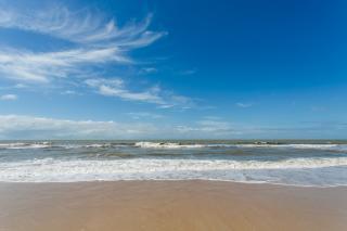 São Paulo: Terreno de Praia com 243 hectares e 1,6 kilometros linha mar 9