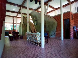 Itanhaém: Lindo sitio em Mongaguá, com amplo espaço, muito verde, ar puro e água boa !!! 9