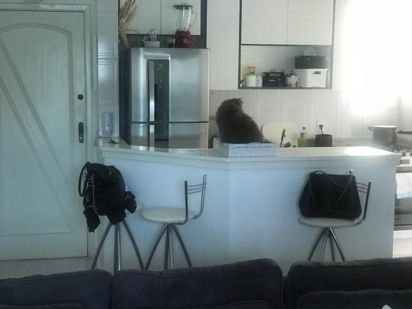 Santo André: Apartamento 1 Dormitório 52 m² em São Bernardo do Campo - Jardim do Mar. 3