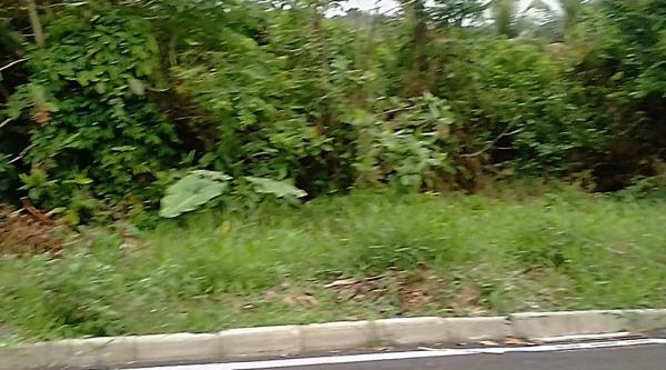 Maricá: R$ 45 Mil Reais! Bambuí-Maricá, Terreno De Fácil Acesso, 570 m² 7