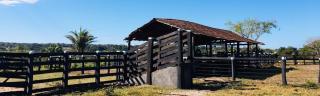 Cuiabá: VENDO!!! Uma fazenda na região de Rondonópolis com 104 alqueires (249.6 Hectares) 16