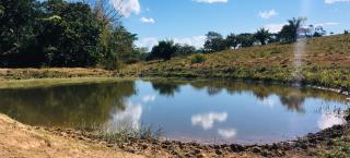 Cuiabá: VENDO!!! Uma fazenda na região de Rondonópolis com 104 alqueires (249.6 Hectares) 2