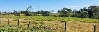 Cuiabá: VENDO!!! Uma fazenda na região de Rondonópolis com 104 alqueires (249.6 Hectares) 21