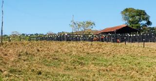 Cuiabá: VENDO!!! Uma fazenda na região de Rondonópolis com 104 alqueires (249.6 Hectares) 23