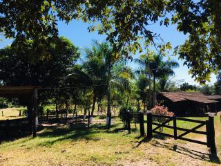 Cuiabá: VENDO!!! Uma fazenda na região de Rondonópolis com 104 alqueires (249.6 Hectares) 25