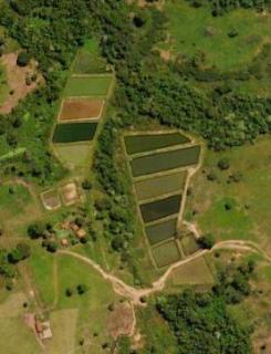 Cuiabá: VENDO!!! Uma fazenda na região de Rondonópolis com 104 alqueires (249.6 Hectares) 3