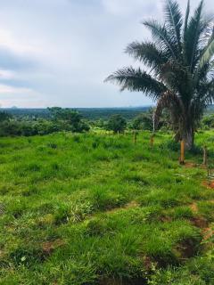Cuiabá: VENDO!!! Uma fazenda na região de Rondonópolis com 104 alqueires (249.6 Hectares) 6