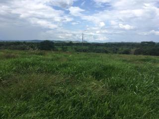 Cuiabá: VENDO!!! Uma fazenda na região de Rondonópolis com 104 alqueires (249.6 Hectares) 8