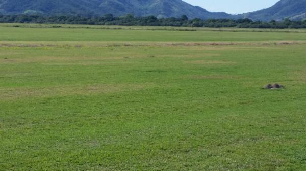 São Paulo: Terreno considerável com 220 ha perto de Saquarema, Estado do Rio de Janeiro 2