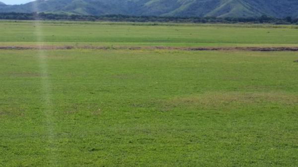 São Paulo: Terreno considerável com 220 ha perto de Saquarema, Estado do Rio de Janeiro 8