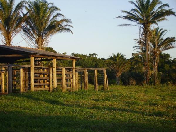 São Paulo: Terreno para Eco Resort com 460 ha em Caravelas, no sul da Bahia 2
