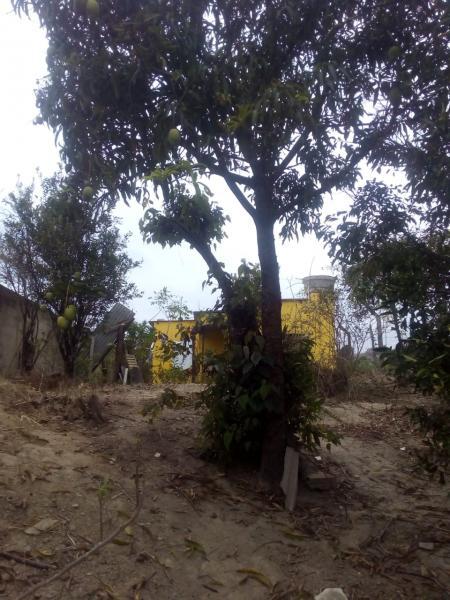 Vespasiano: Casa para Venda, Vespasiano / MG, bairro Nova Pampulha, 1 dormitório, 1 banheiro, área total 573,00 2