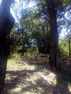 Vespasiano: Terreno para Venda, Vespasiano / MG, bairro Nova Pampulha 3