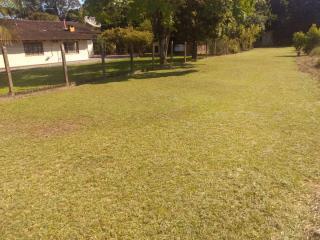 Barra Velha: Chácara com 2500m² com pomar, árvores frutíferas, área verde de pastagem com mais uma casa de 3 quartos 6