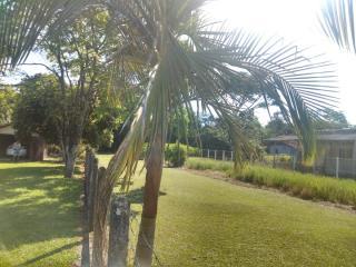 Barra Velha: Chácara com 2500m² com pomar, árvores frutíferas, área verde de pastagem com mais uma casa de 3 quartos 8