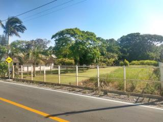 Barra Velha: Chácara com 2500m² com pomar, árvores frutíferas, área verde de pastagem com mais uma casa de 3 quartos 9